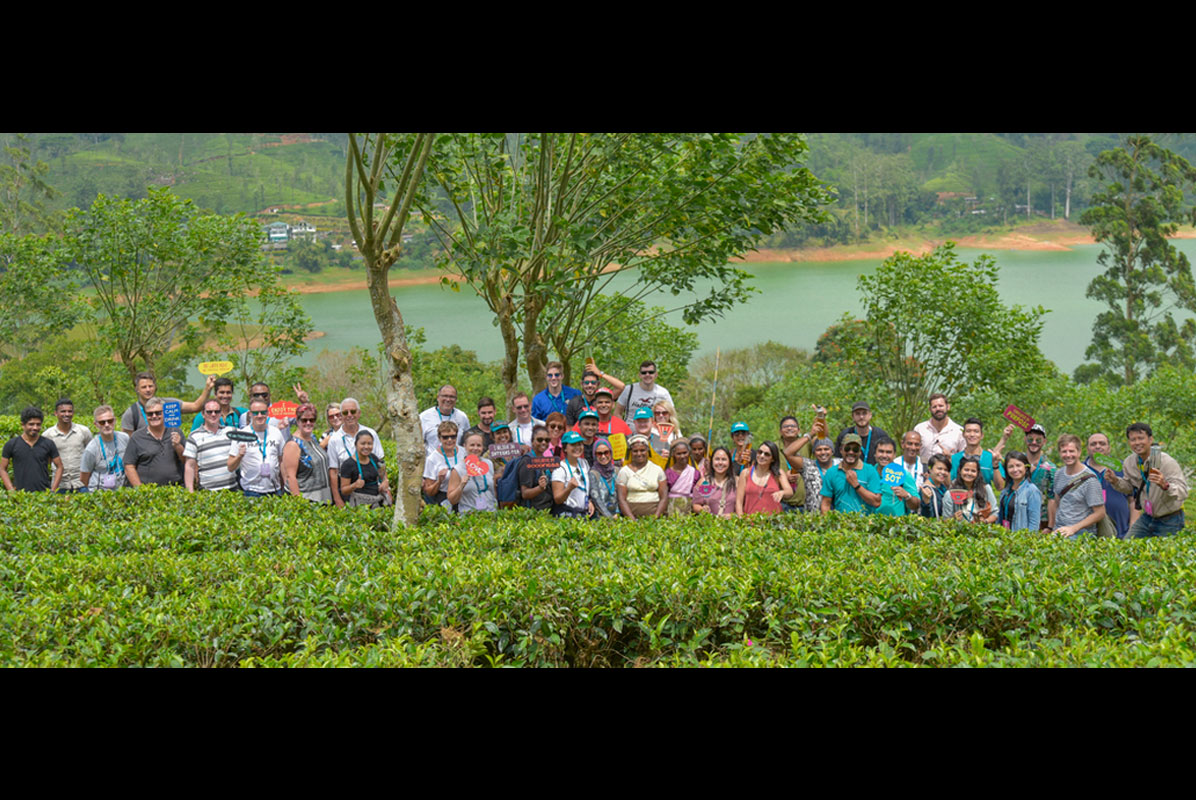 Visit to the Dilmah Plantation