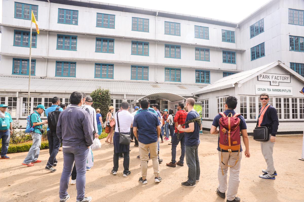 Dilmah School of Tea February 2017 - Park Estate Visit