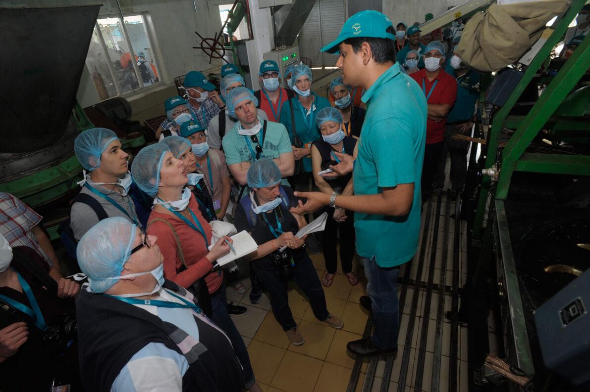 Buddika Weerasekara explaining the process of Green tea manufacturing