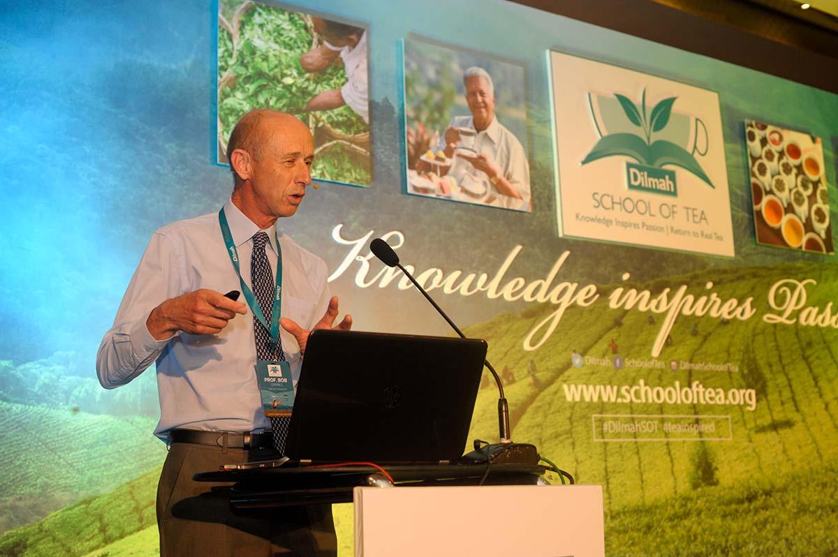 Tea & Health presentation by Prof. Grimble