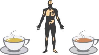 Does fresh tea have more health benefits than not so-fresh tea?