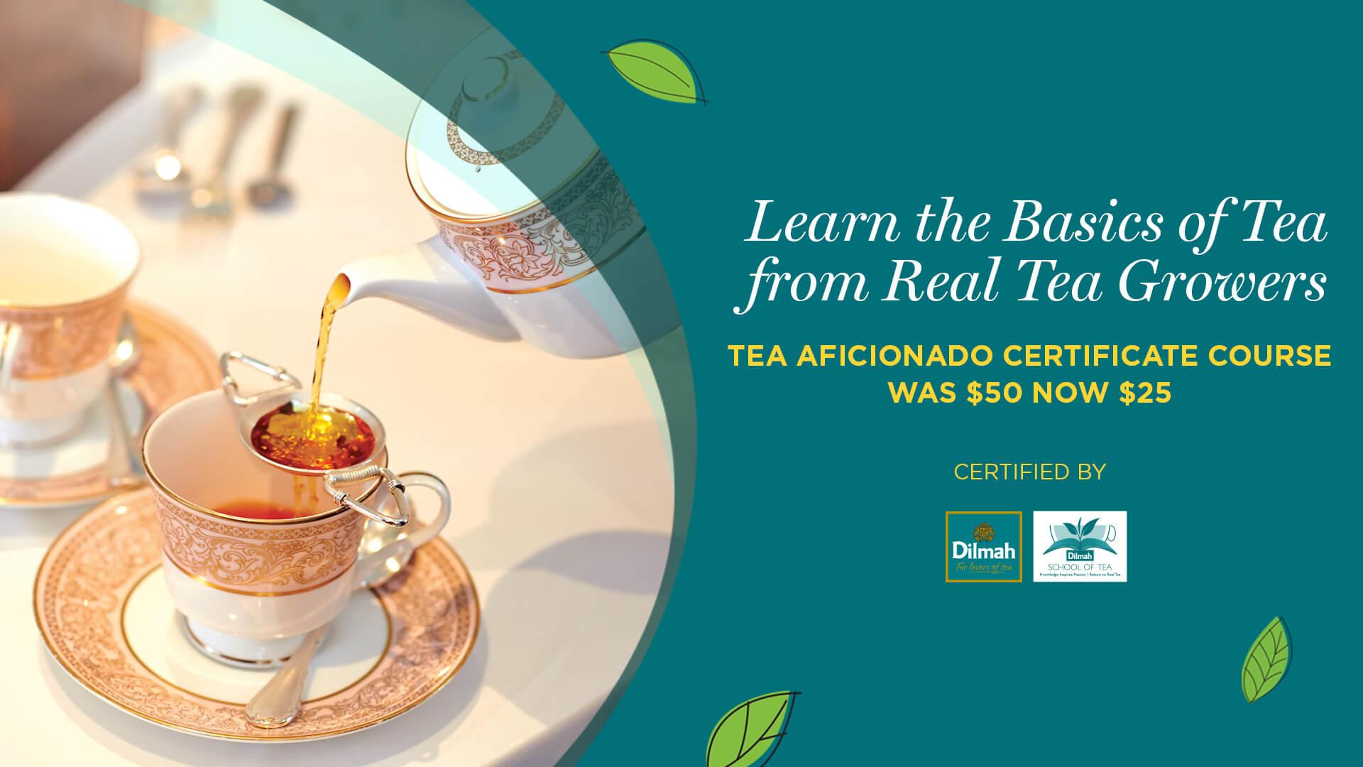 Tea Aficionado Certificate Course